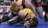 Rocky Ford's Travis Schwindt puts Meeker's Roston Steiner's face to the mat  in 2A 130 pound bout...