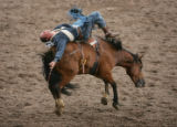 Alan Michael Dacyk, of Calgary, AB, competes in the Bareback Bronc competition during the 2006...