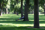 Jeff Goldberg (cq) finds a shady spot under a tree in Cheesman Park Thursday afternoon July 13,...