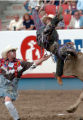 (GREELEY, COLO., JULY 2, 2004)    Bullrider, Shad Buhn of Roy, Washington,  gets thrown by...
