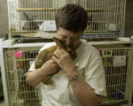 Nancy LaRoche, (cq), holds Wesley, (cq), a mixed male rabbit about 4-years-old that lost his left...